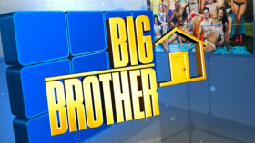 Big Brother 15 USA